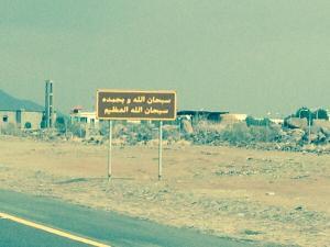Figure 1A: An example of a roadside in the Arabian Peninsula.